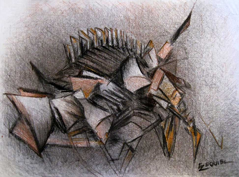 Chatarra I. Pencil, charcoal on paper_12x16 in. 2012